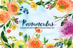 Ranunculus- Watercolor Clip Art by SmallHouseBigPony on @creativemarket