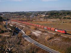 Comboio de Madeira n.º 61633 - Paialvo