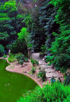 New Wonderful Photos: Serralves Garden, Porto. A riot of green Visit Portugal, Spain And Portugal, Portugal Travel, Travel Around The World, Around The Worlds, Porto City, The Places Youll Go, Places To Visit, Parque Natural