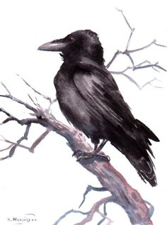 Crow Original watercolor painting 12 X 9 in black by ORIGINALONLY, $38.00