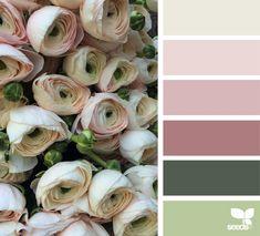 {flora hues}image via:@fairynuffflowers