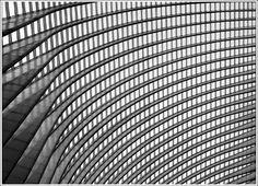 Train station in Liege, Belgium  Santiago Calatrava