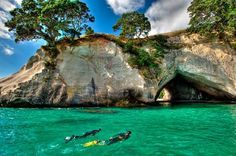 Glass Bottom Boat Whitianga: Snorkelling at Cathedral Cove