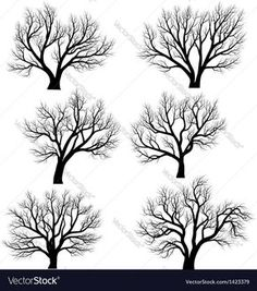 Set of vector silhouettes of deciduous large trees without leaves during the winter or spring period. Download a Free Preview or High Quality Adobe Illustrator Ai, EPS, PDF and High Resolution JPEG versions.