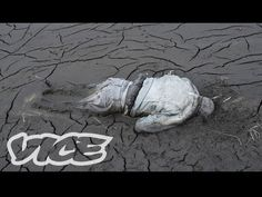 VICE accompanies photographer Donald Weber to the buffer zone at Fukushima, Japan, where the eerie silence mirrors that at Chernobyl, and follow him as he attempts to document the unfolding nuclear crisis.    Check out more episodes of Picture Perfect: http://vice.com/picture-perfect    Originally aired in 2011 on http://VICE.com    Subscribe for vide...