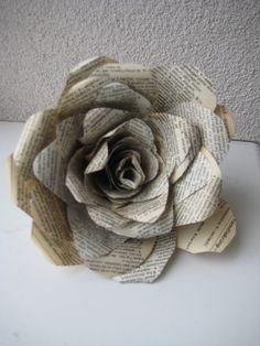 weer een nuttig gebruik van het oude woordenboek. roos van papier, paper rose.
