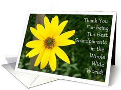 Personalize any greeting card for no additional cost! Cards are shipped the Next Business Day. Product ID: 673285 Grandparents Day Cards, Sunflower Cards, Holiday Cards, Up, Greeting Cards, Popular, Christian Christmas Cards, Popular Pins, Most Popular