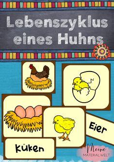 Kartenspiel LГјgen
