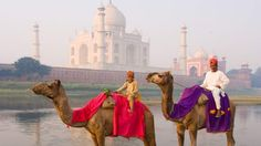 India for beginners: what you need to know