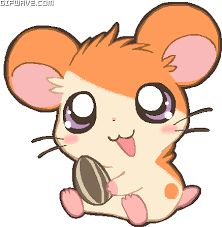 You are searching for Kawaii hamtaro gifs gifs at Gifwave. Some examples are Anime Kawaii Hamtaro, Kawaii Pixel Hamtaro Anime, Anime Kawaii Hamtaro Wink. Anime Chibi, Kawaii Anime, Kawaii Chibi, Cute Chibi, Kawaii Cute, Cute Animal Drawings, Cute Drawings, Pokemon, Pikachu