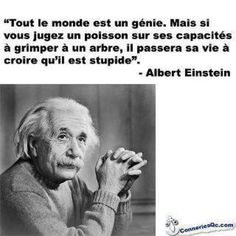 """Citations D'Albert Einstein Description Citation de Einstein: """"Everybody is a genius. But if you judge a fish by its ability to climb a tree, it will Blabla, Tree Quotes, Words Quotes, Sayings, French Quotes, Albert Einstein, Citation Einstein, Einstein Quotes, Positive Attitude"""