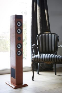 SoundTower TW1 - Brown Leather finish Play the sound of your iPod®, iPhone® or any other multimedia player on this SoundTower