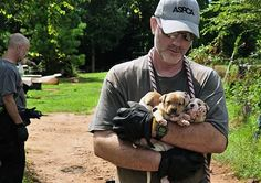 Authorities bring down 11 suspected dogfighters and rescue 367 dogs in the second-largest dog fighting bust in U.S. history.