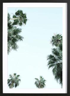 Palm Springs als Gerahmtes Poster von Shot by Clint | JUNIQE
