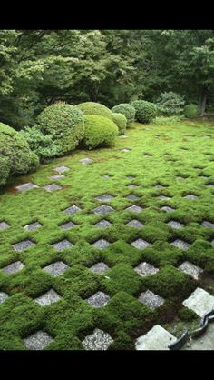 Zen paving - note the high degree of structure and symetry breaking up and eventually becoming nothingness........ Nothing is without meaning in Japan