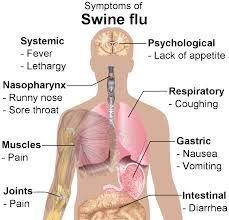 Swine Flu Natural Treatment In Hindi