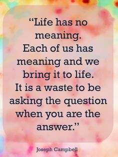 Life has no meaning. Each of us has meaning and we bring it to life.