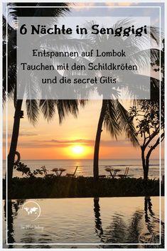 Wir waren 6 Nächste auf #lombok und haben diese kurze Zeit sehr genossen und auch sehr genutzt. In unserem Reisebericht nehmen wir dich mit zu den secret Gilis, unseren Tauchausflügen und zeigen dir was man mit einem Roller in der Umgebung von Senggigi alles findet.
