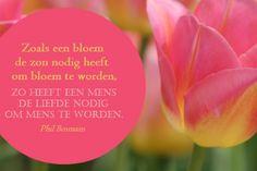 Zoals een bloem de zon nodig heeft om bloem te worden, zo heeft een mens de liefde nodig om mens te worden. - Phil Bosmans