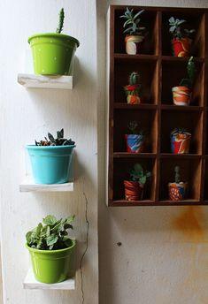 Plantas na casa da Leyla e 10 boas ideias para seus vasos