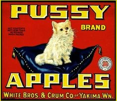Pussy Apples | White Brothers & Crum Company, Yakima, Washington