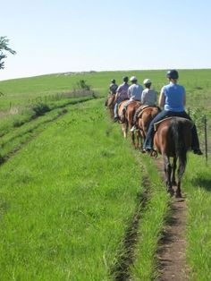 Send your kid to summer camp at Camp Wood YMCA in the beautiful Kansas flint hills. www.campwood.org