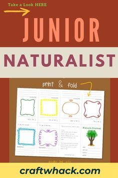 If your little one shows a keen interest in nature and the great outdoors, you might have a budding junior naturalist in your midst. Encourage your child's innate love of all things nature by taking him on nature walks or even studying the trees, flowers, and insects in your back garden. You could also have a look at giving him a nature journal to record his findings. Check out the mini nature journal and other ideas in our article here. #JuniorNaturalist #Naturalis #GreatOutdoors #NatureWalks Crafts For Kids To Make, Make Art, Art For Kids, Easy Art Projects, Nature Journal, Walking In Nature, Fine Motor Skills, Encouragement, Doodles