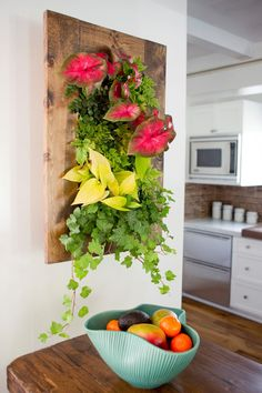 This is a GroVert wall planter.