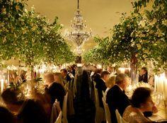 Wedding Decor: Indoor Trees - Tim Duncan Events | Tim Duncan Events