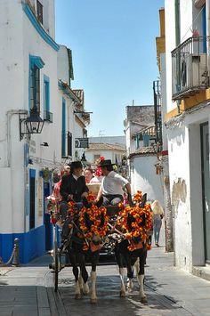 "Street and ""calesa"" in Cordoba, Spain,"