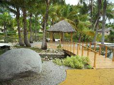 Helpful Review - Catalonia Bavaro Beach, Casino & Golf Resort: Landscape