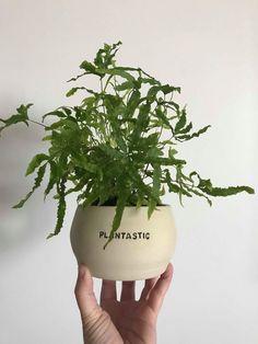 Little Prick — Please don't die — I will survive — Pun plant pots — Handmade CERAMIC planters — Cactus and succulent pots Indoor Planters, Diy Planters, Ceramic Planters, Herb Puns, Ceramic Houses, Painted Pots, Terracotta Pots, Clay Pots, Plant Decor