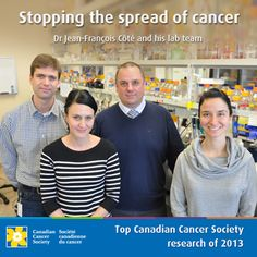 Top Society research of 2013