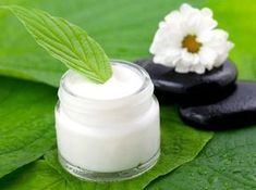 Photo about Moisturizer in pot with leaf. Image of cosmetic, wellness, cream - 16065929 Benzoic Acid, Daily Beauty, Natural Cosmetics, Home Remedies, Coco, Glass Of Milk, Herbalism, Beauty Hacks, Moisturizer