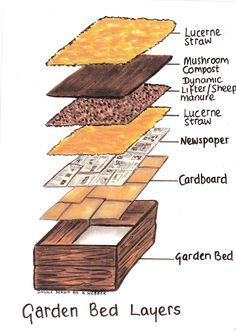 Layering your raised garden bed for maximum productivity. : Layering your raised garden bed for maximum productivity.