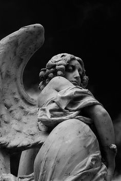 Ancient Greek Sculpture, Greek Statues, Angel Statues, Ancient Art, Angel Sculpture, Roman Sculpture, Ed Wallpaper, Cemetery Art, Greek Art