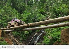 Jungle in Malaysia. Crossing rivers like a boss.