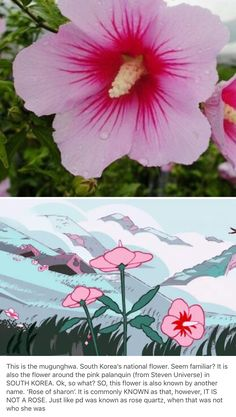 Just something I figured out that the crewniverse did. Dang those guys pay attention to detail <--bro Perla Steven Universe, Steven Universe Memes, Steven Universe Figures, Pink Diamond Steven Universe, Steven Univese, Peace And Love, My Love, Rose Of Sharon, Lapidot