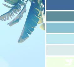 new pics summer color palette tropical diy work : What an incredible day! COLOURlovers color palette software is bringing you our best picks of color palettes which will take your breath away. Coastal Color Palettes, Coastal Colors, Tropical Colors, Modern Tropical, Tropical Design, Color Concept, Color Schemes Design, Blue Colour Palette, Pastel Palette