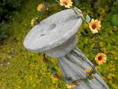 An array of yellow petals