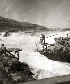 Dip net fishing for salmon at Celilo Falls on the Columbia River, ca. 1930s. The Oregon Trunk Railway Bridge from Wishram, Washington is visible in the background.