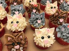 cat cupcakes for kids . Cupcake Party, Party Cakes, Cupcake Cakes, Birthday Cake For Cat, Birthday Cupcakes, 7th Birthday, Kitten Party, Cat Party, Fete Emma