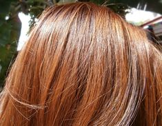 Not liking the orange and two-toned-ness of Palty Honey Brown. Description from ph.makeupandbeauty.com. I searched for this on bing.com/images