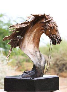 #HORSES   Bust of beauty
