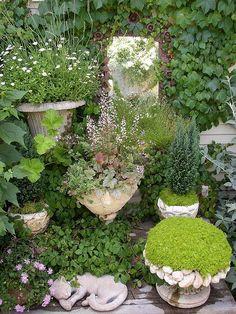 container garden . creative gardening in small urban spaces