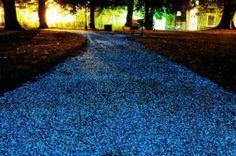 Glorious Glow Pebbles