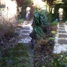 The 'before' and 'after', starting to make our allotment ready for spring and summer cutting the grasses.