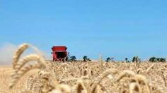 Farm work wanted South Australia Region  - ( Couple with self contained shower toilet caravan ) - Experienced retired farmer - Shearer - Tractor Driver - Crop Sprayer - Fencer - Stock control -  Tank & Trough management - Stock feeding - Maintenance - Ect Ect - Call Peter Hebberman on - ( 0408989524 ) $0.00 AUD