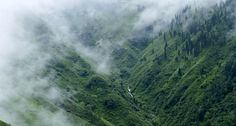 coorg - Google Search