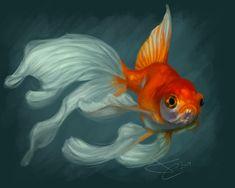 Veiltail Goldfish by greyviolett.deviantart.com on @DeviantArt